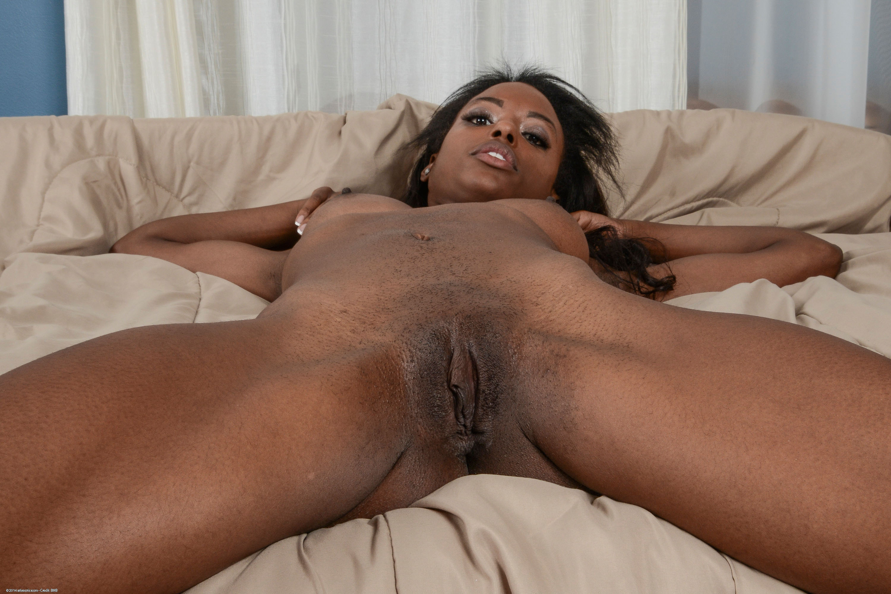 Tiffany taylor ebony